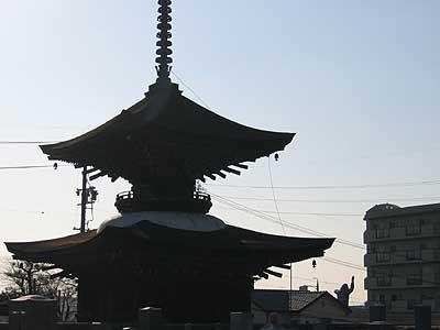 大樹寺多宝塔とゴリラ