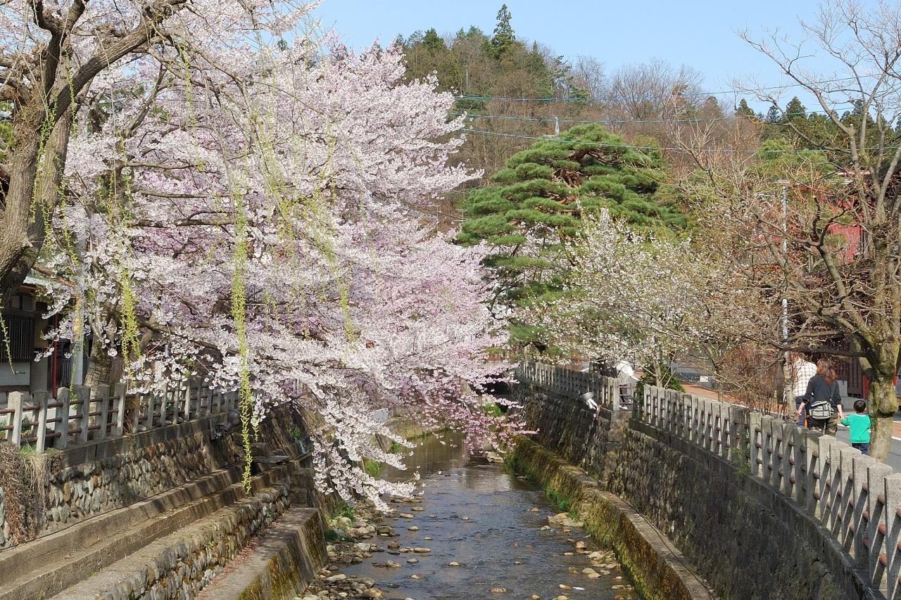 春の高山祭 2007