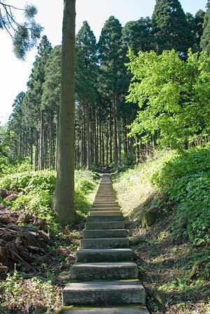 仏御前の滝 遊歩道