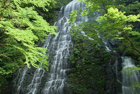 越前 滝と戦国と禅の道紀行 第2回 龍双ヶ滝