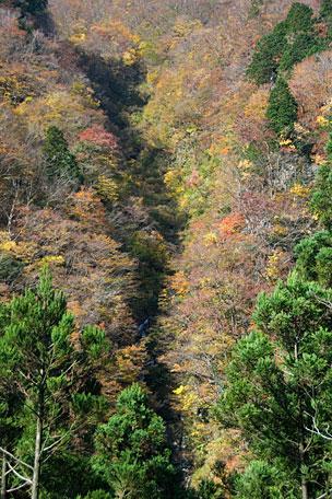 秋の日本海紀行 第1回「七反滝」