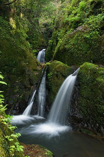 城光寺の滝