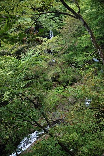 裏見の滝遊歩道