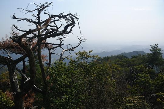 納古山にて