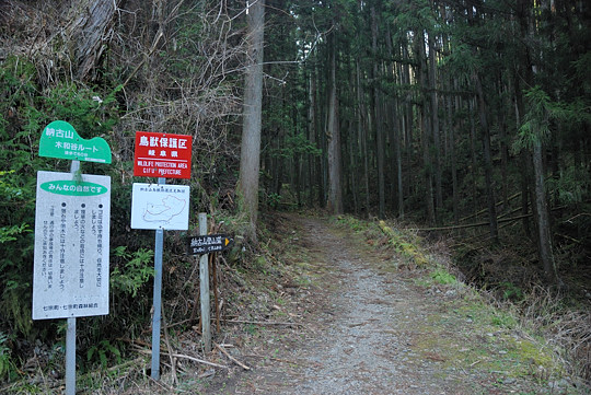 初級コース入口