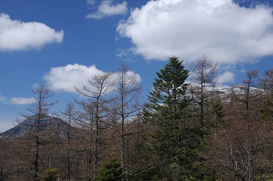 蓼科山と横岳