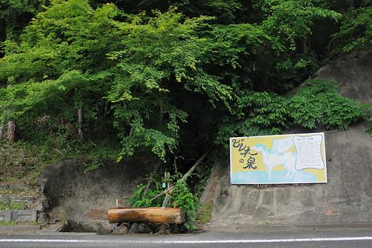 ピレネーの泉