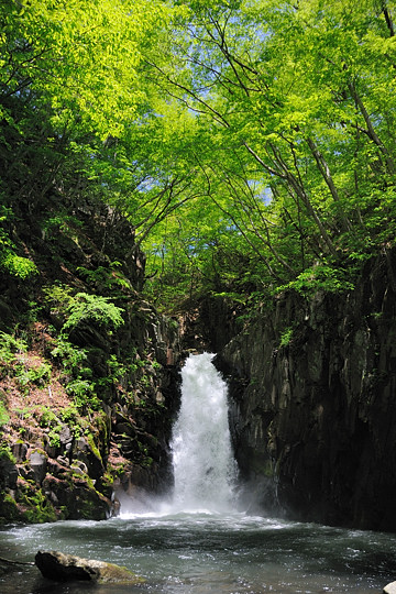 続・八ヶ岳ドライブ 第3回 大滝
