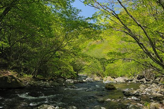 宮司の滝遊歩道