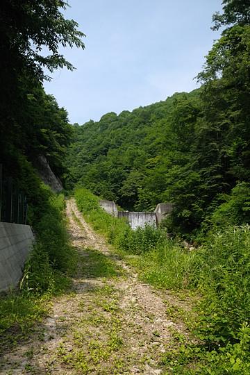 前半は林道歩き