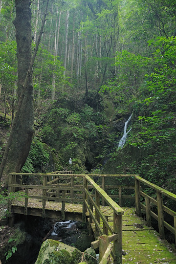 稚児の滝遊歩道