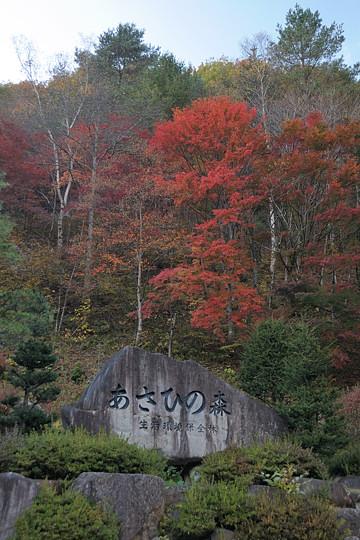 あさひの森(カクレハ高原)
