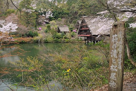 萩の滝と松尾池
