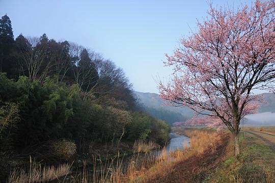 三河の滝めぐり2010 「穴滝」