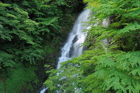 ニコイ大滝を再訪