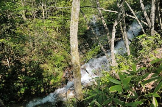 林道から見た床並の滝