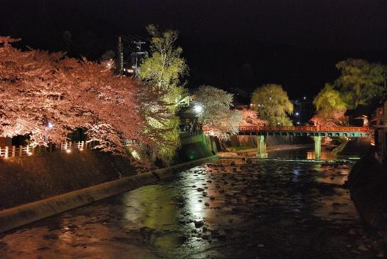 夜桜 (2007)