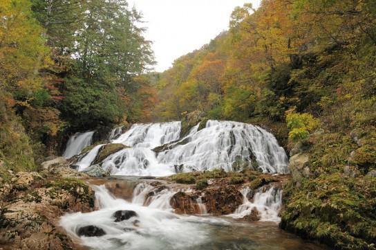 秋の荘白川ドライブ