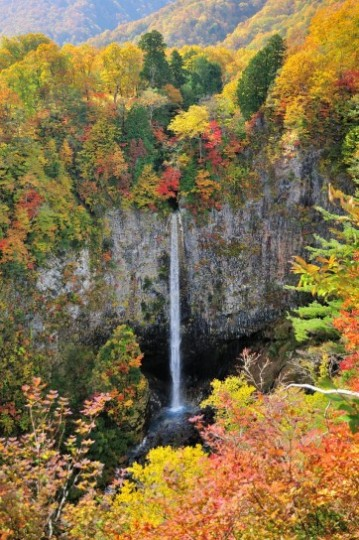 雪と紅葉と滝