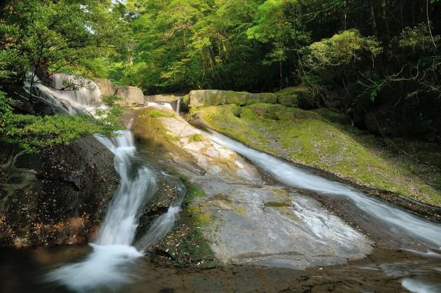 九州紀行 その9 菊池渓谷