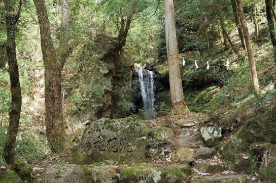 武儀紀行 第4回 権現の滝