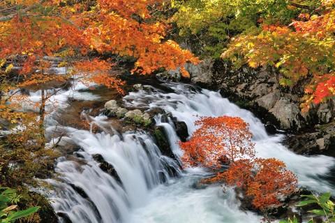 庄川源流 秋の滝めぐり
